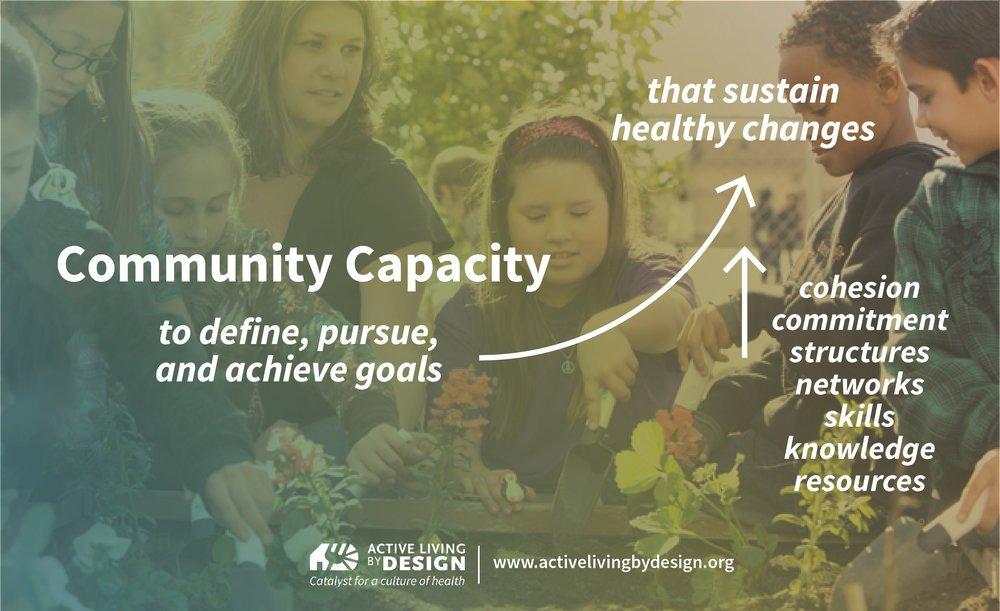 Understanding community capacity